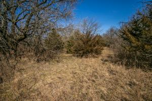 Yates Center Income Producing & Hunting Land in Woodson, KS (13 of 65)