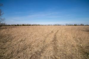 Yates Center Income Producing & Hunting Land in Woodson, KS (2 of 65)
