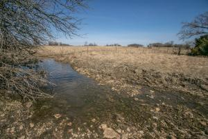 Yates Center Income Producing & Hunting Land in Woodson, KS (11 of 65)