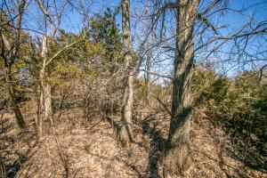 Yates Center Income Producing & Hunting Land in Woodson, KS (33 of 65)