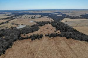 Yates Center Income Producing & Hunting Land in Woodson, KS (52 of 65)