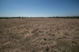 Yates Center Income Producing & Hunting Land in Woodson, KS (38 of 65)