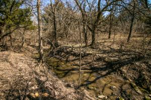 Yates Center Income Producing & Hunting Land in Woodson, KS (63 of 65)