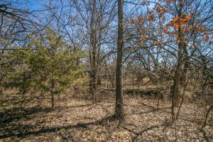 Yates Center Income Producing & Hunting Land in Woodson, KS (15 of 65)