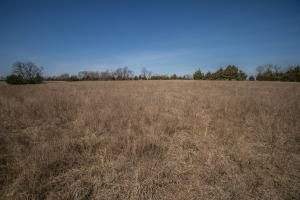 Yates Center Income Producing & Hunting Land in Woodson, KS (42 of 65)