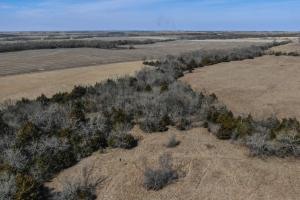 Yates Center Income Producing & Hunting Land in Woodson, KS (56 of 65)