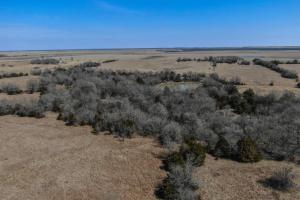 Yates Center Income Producing & Hunting Land in Woodson, KS (48 of 65)