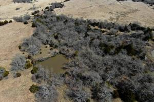 Yates Center Income Producing & Hunting Land in Woodson, KS (8 of 65)