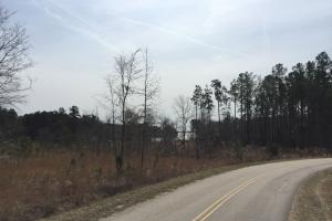 Wateree Inland Development Tract or Private Homesite in Kershaw, SC (2 of 15)