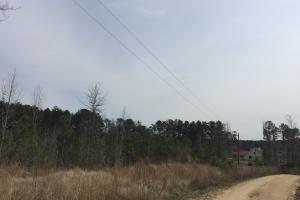 Wateree Inland Development Tract or Private Homesite in Kershaw, SC (7 of 15)
