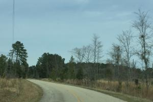 Wateree Inland Development Tract or Private Homesite in Kershaw, SC (12 of 15)