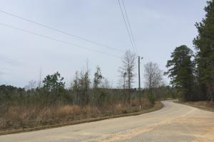 Wateree Inland Development Tract or Private Homesite in Kershaw, SC (5 of 15)