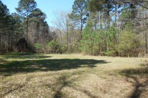 Holland 40ac - Franklin County MS