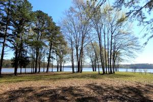Private 30-Acre Waterfront – Over 2,200 Foot Water Frontage in Nacogdoches, TX (19 of 37)
