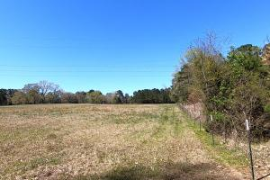 Private 30-Acre Waterfront – Over 2,200 Foot Water Frontage in Nacogdoches, TX (21 of 37)
