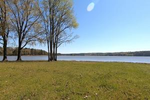 Private 30-Acre Waterfront – Over 2,200 Foot Water Frontage in Nacogdoches, TX (32 of 37)