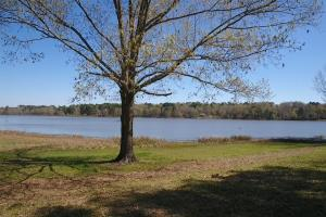 Private 30-Acre Waterfront – Over 2,200 Foot Water Frontage in Nacogdoches, TX (13 of 37)