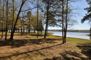 Private 30-Acre Waterfront – Over 2,200 Foot Water Frontage in Nacogdoches, TX (33 of 37)