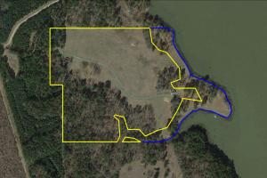 Private 30-Acre Waterfront – Over 2,200 Foot Water Frontage in Nacogdoches, TX (2 of 37)
