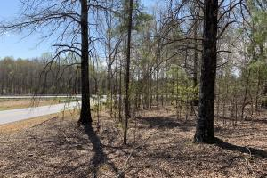 Dacusville Multipurpose Developmental  Property in Pickens, SC (2 of 28)