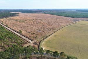 Roberson Homesite with Acreage - Lenoir County NC