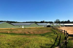 Batesburg Chicken Breeder Farm - Saluda County SC