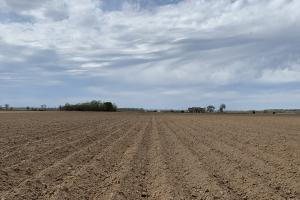 52 Acres of Irrigated, Leveled Farm Land with Excellent Residential Development Possibilities - Richland Parish LA