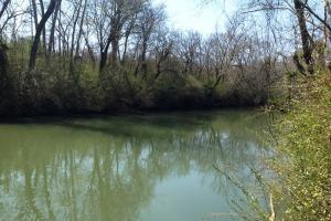 Photo 5 of 14  ·  river front land for sale ga, ga hunting land for sale