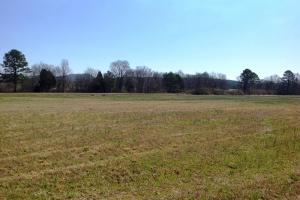 Photo 7 of 14  ·  river front land for sale ga, ga hunting land for sale