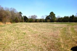 Photo 13 of 14  ·  river front land for sale ga, ga hunting land for sale
