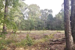Turn Key Hunting Camp in Attala, MS (8 of 30)