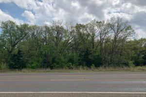 Wooded 10 ac tract off Hwy 198 (2 of 3)