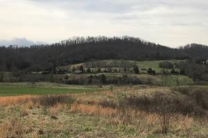 Graysburg Hills Large Acreage Estate - Greene County TN