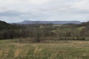 Graysburg Hills Large Acreage Estate in Greene, TN (47 of 52)