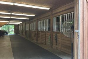 Horse Stalls (8 of 34)