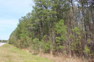 Bonneau Large Acreage Estate - Berkeley County SC
