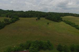 Most of the pasture is shown in this photo. (8 of 15)
