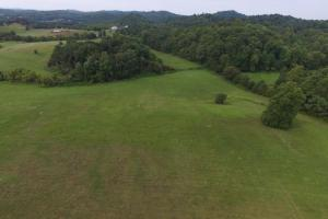 Shows the back corner of the property that is not fenced. This acreage was added from the adjoining tract when it sold to total the 28.1 acres.  (6 of 15)
