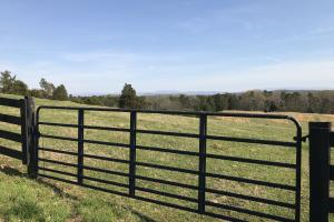 Mountain View Farm Estate in Loudon, TN (7 of 28)