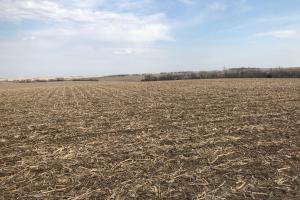 Farm or Future Development Land  - Sarpy County NE