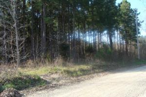 Timber and Hunting Tract in Prairie, AR (38 of 44)