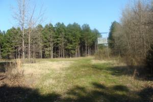 Timber and Hunting Tract in Prairie, AR (10 of 44)