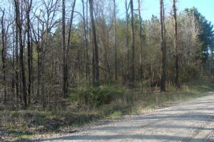 Timber and Hunting Tract in Prairie, AR (44 of 44)