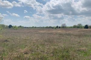 11 ac near Cedar Creek Lake, Excellent Mix of Pasture and Scattered Trees - Henderson County TX