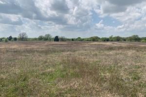11 acres off Hwy 198, great tract for a new home. (2 of 2)