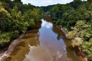 Conecuh River Hunting & Timber Investment - Covington County, AL
