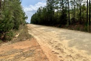 Conecuh River Hunting & Timber Investment in Covington, AL (19 of 19)