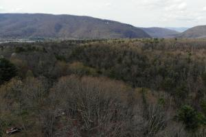 14 Acres in McCoy Minutes from Blacksburg in Montgomery, VA (2 of 12)