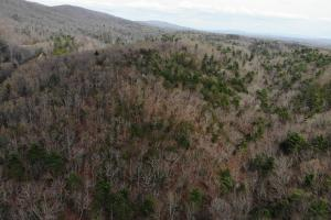 14 Acres in McCoy Minutes from Blacksburg in Montgomery, VA (8 of 12)