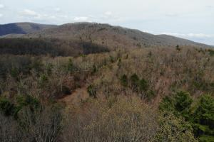 14 Acres in McCoy Minutes from Blacksburg in Montgomery, VA (5 of 12)